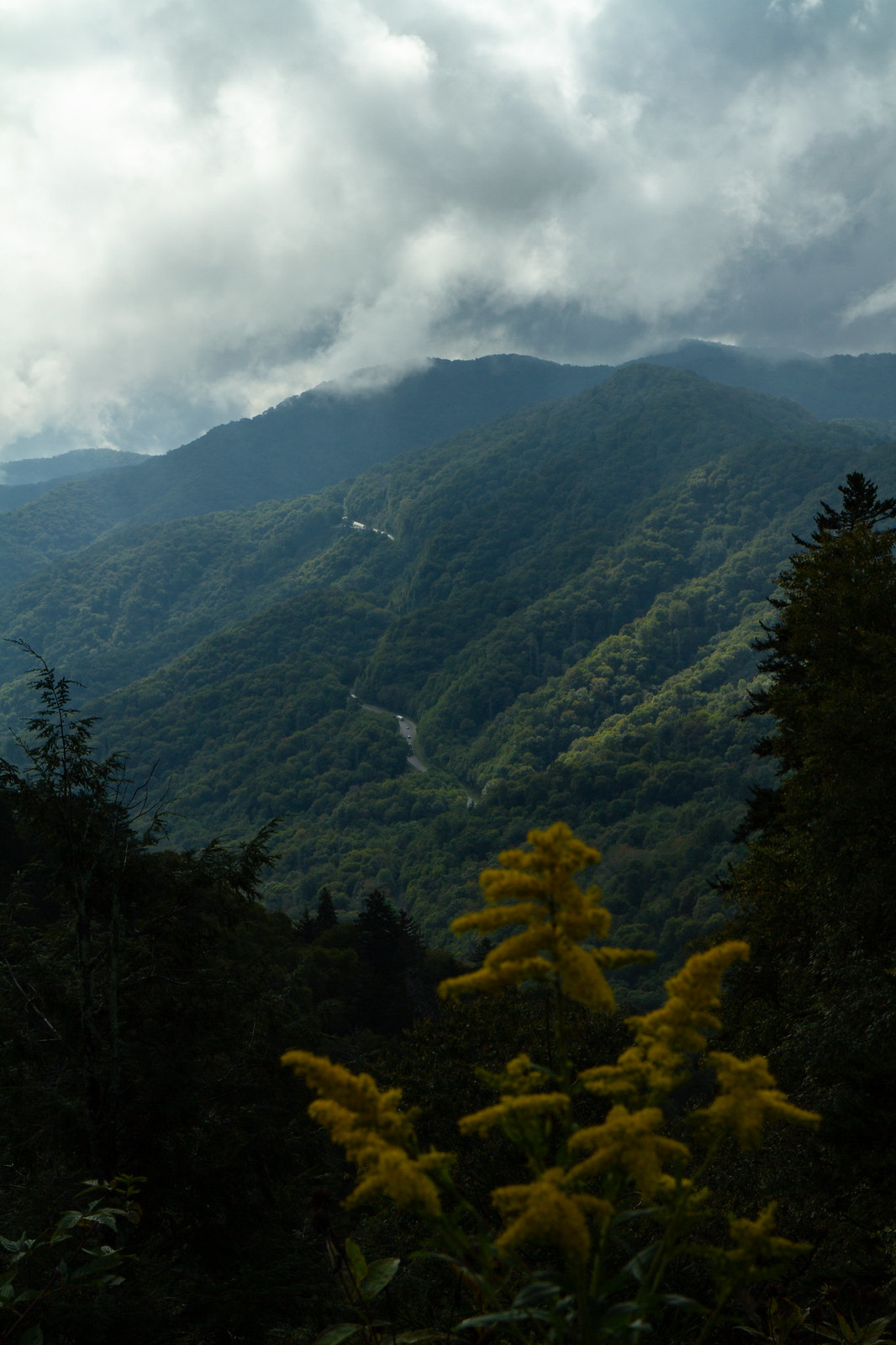 great smoky mountain national park out of boundaries