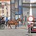 <p><a href=&quot;http://www.flickr.com/people/b_ribakove/&quot;>bribakove</a> posted a photo:</p>&#xA;&#xA;<p><a href=&quot;http://www.flickr.com/photos/b_ribakove/43966048795/&quot; title=&quot;Poland_082918-093&quot;><img src=&quot;http://farm2.staticflickr.com/1976/43966048795_09ebab9191_m.jpg&quot; width=&quot;240&quot; height=&quot;157&quot; alt=&quot;Poland_082918-093&quot; /></a></p>&#xA;&#xA;