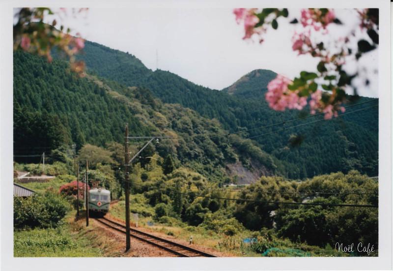 夏が恋しい by Noël Café