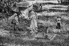 Sylvan Abbey Cemetery (35)
