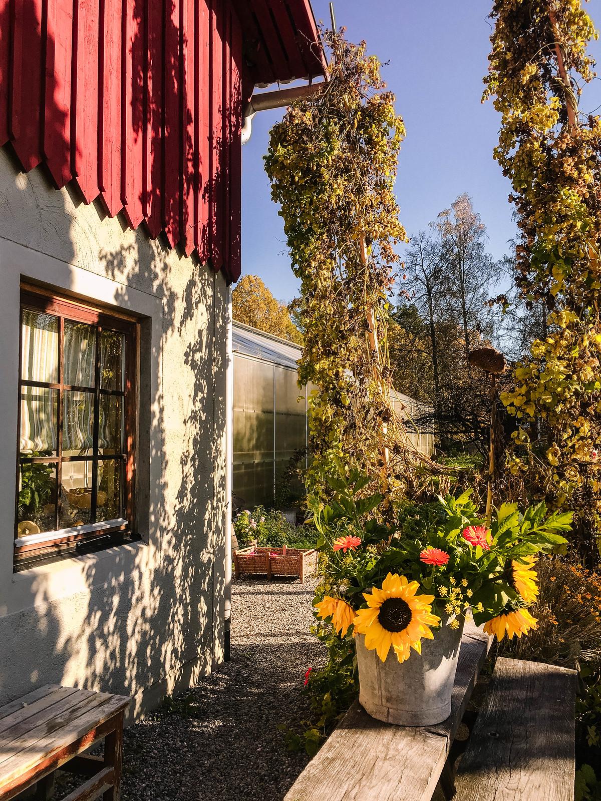 Ändebols gård IMG_8867-2