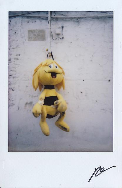 Hang-Bee