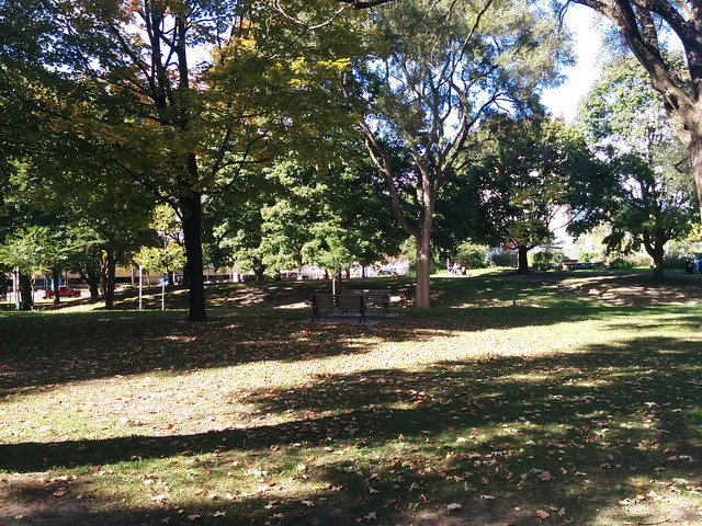 In Dufferin Grove Park (10) #toronto #dufferingrove #dufferingrovepark #parks #fall #autumn #latergram