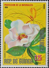 Equatorial Guinea (10) 1979 Nature Preservation - Flowers