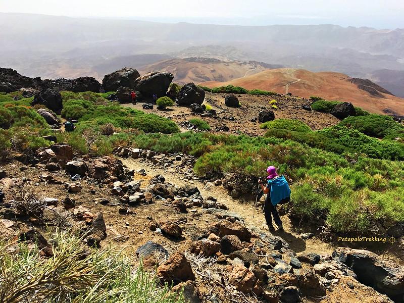24 Bajada entre la retama del Teide