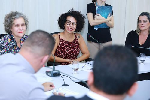 4ª Reunião Extraordinária - Comissão de Participação Popular