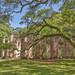 View of church ruins near Beaufort, SC.