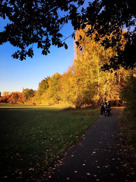November in Stein