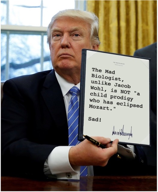 Trump_childprgidy