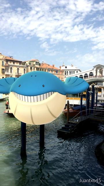 Wilmer en Venecia