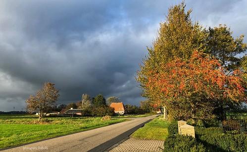 Herfst 2018 Oranjewoud