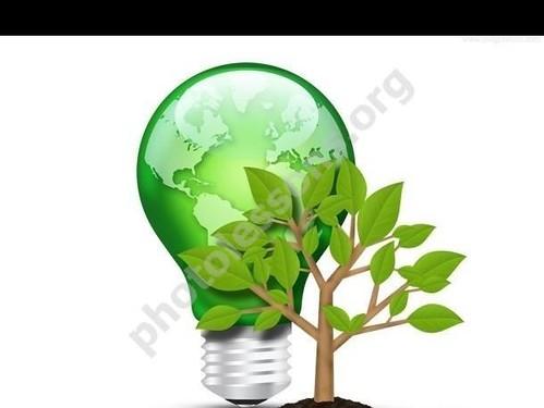зеленая лампочка и деревце