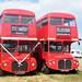 Buses at Wiston Steam Fair