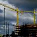 Cranes, Silver Spring