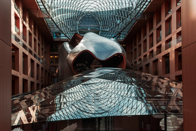 F9316 ~ Frank Gehry's buiding