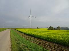 Hermin le  parc éolien  (2)