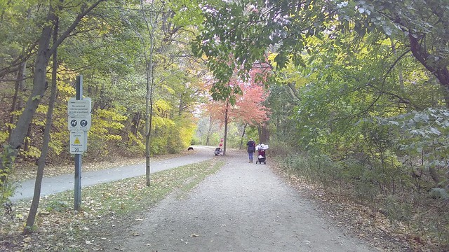 Family portrait #toronto #magwoodpark #humberriver #fall #autumn #path #green #red #yellow #latergram