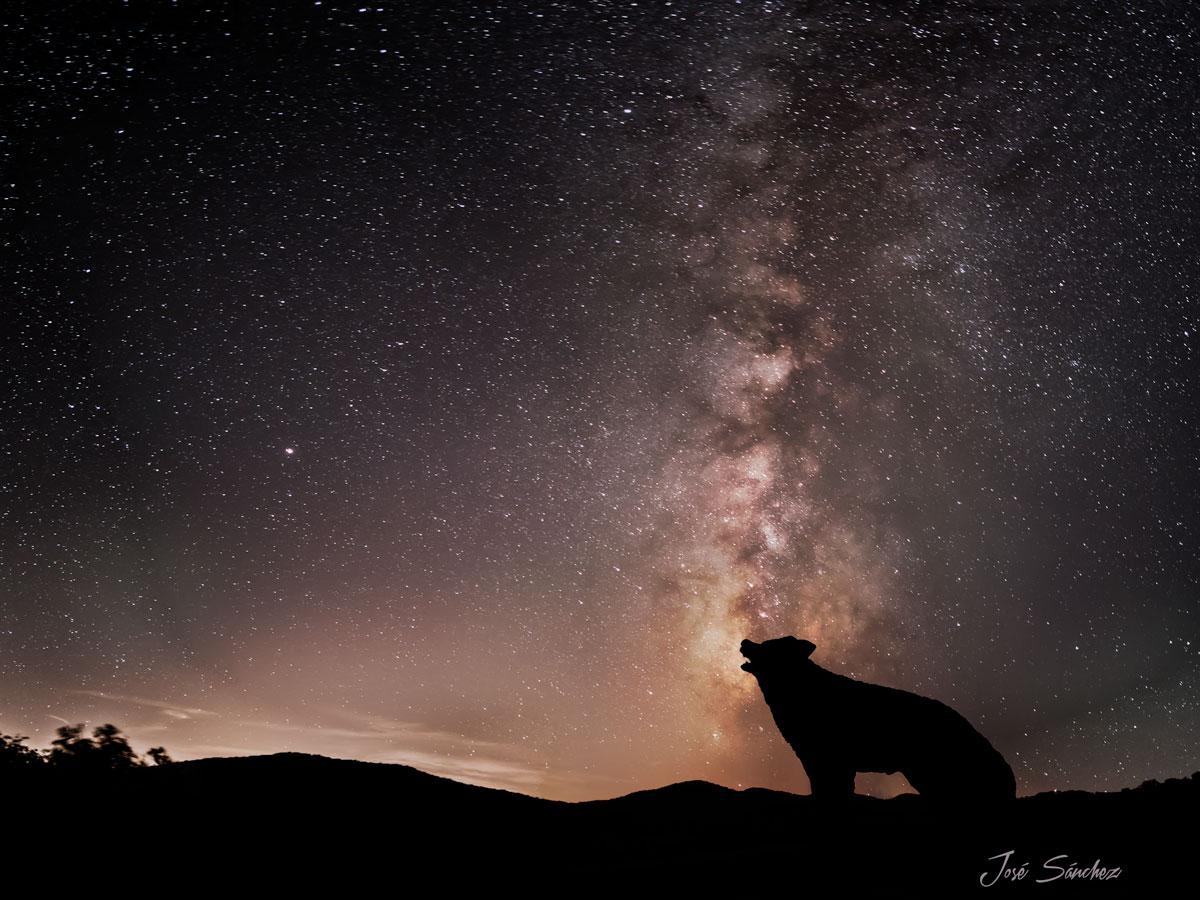 El Aliento Del último Lobo Nocturna Comunidad Nikonistas