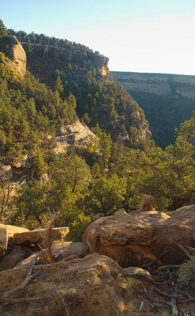 mesa verde cliff