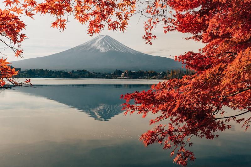 紅葉富士山|Fujisan