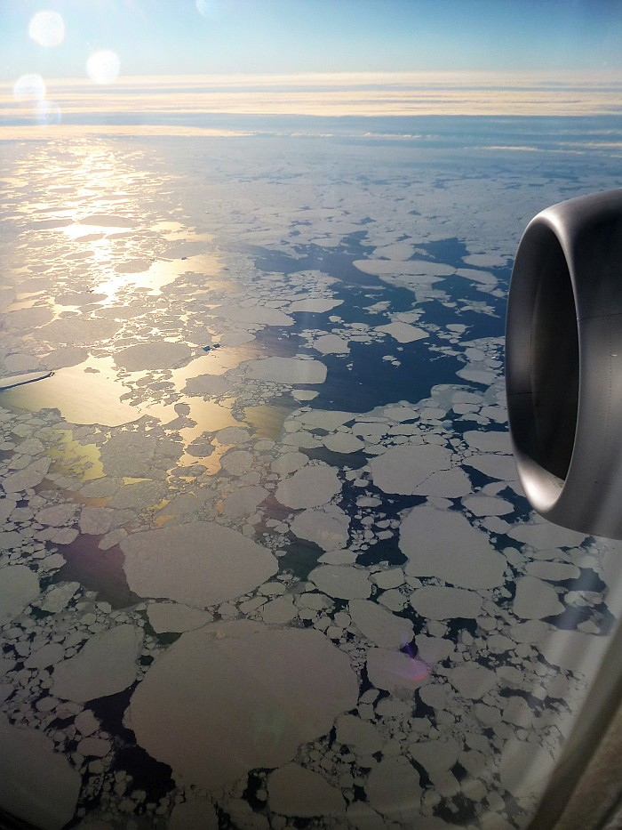 Flying over the ice flows
