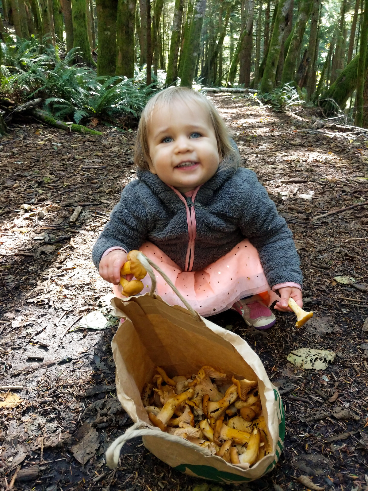 Mushrooming with Lily