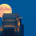 Almost Full Moon by Joel Greenblatt | Clockwork Bikes