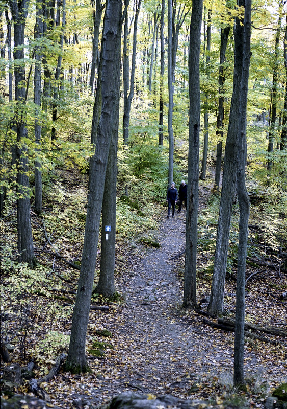 On the Bruce Trail in Kelso_