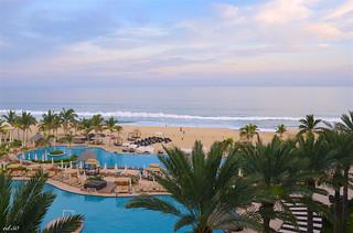 palms, sea & sunset