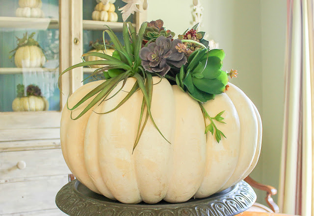 fall link party pumpkins and succulents