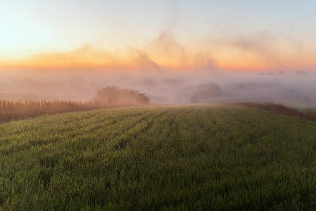 Morning Mists, Sony SLT-A99V, Tamron SP 24-70mm F2.8 Di USD
