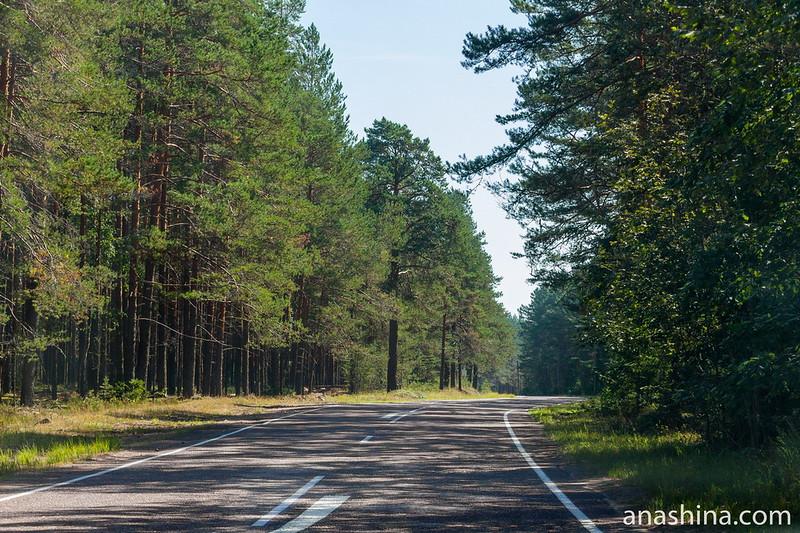 Автомобильная дорога 86К-8, Карелия