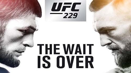 UFC 229 Live Stream
