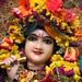 Darshan from IMG_0026