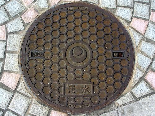 okinawa manhole cover 2 (沖縄県のマンホール2)