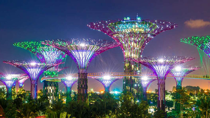 Super tree di Garden by The Bay, destinasi wisata Singapura