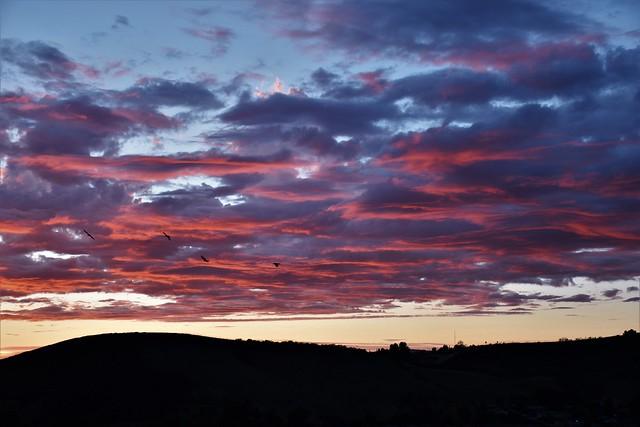 Sunset El Sereno CA, Nikon D5600, AF-S DX Nikkor 18-140mm f/3.5-5.6G ED VR