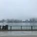 Fog on Detroit river