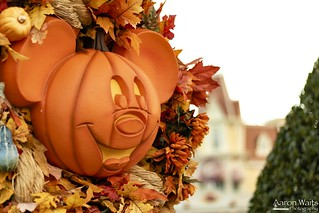 Fall time around the Kingdom