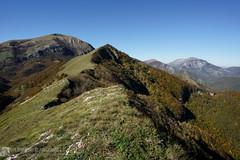 MONTE LO SPICCHIO in autunno (Monte Cucco)