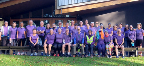 The Purple Shirt Volunteers