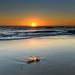 Clear Skies Sun Rising Seascape