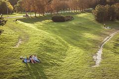 Sunny autumn day | Kaunas
