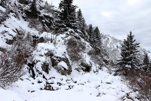 Ambiance bien hivernale