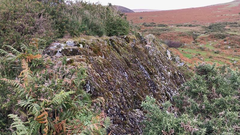 Vale Down Rocks