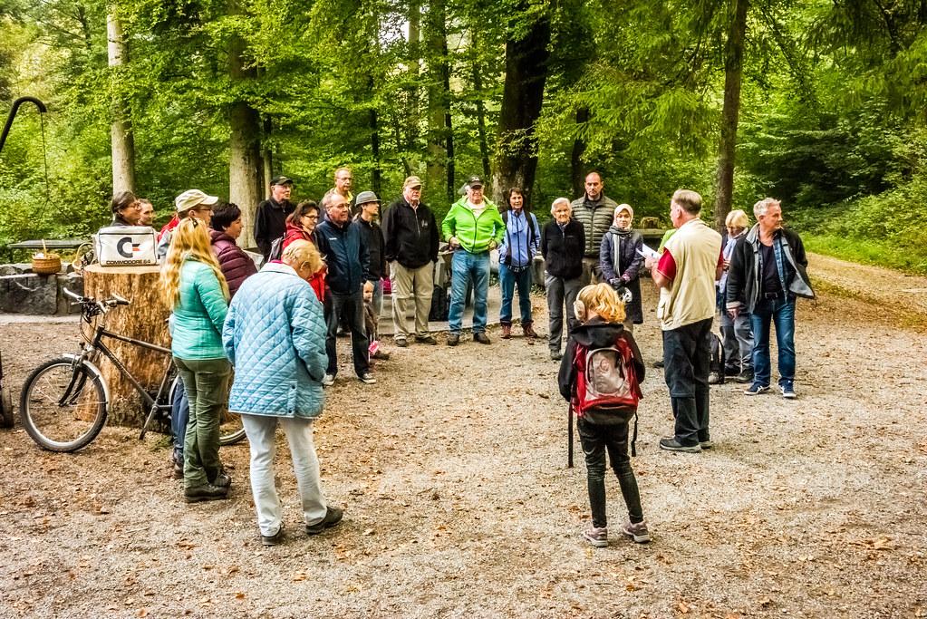 Pilzexkursion in Niederlenz, September 2018
