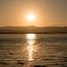 Sun on Water 2