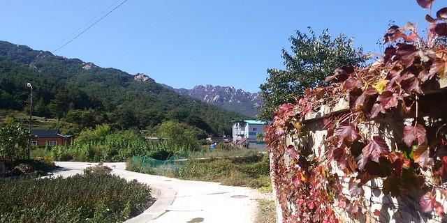 가을동네풍경