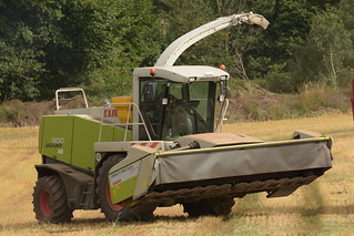 Claas Jaguar 900 Self Propelled Forage Harvester with a Direct Disc 520 Contour Header