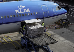 While the 2nd officer goes through his/her papers with the cockpit window nicely open, loadmasters carefully check what luggage you get under your feet today . .